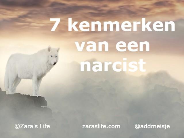 7 kenmerken van een narcist